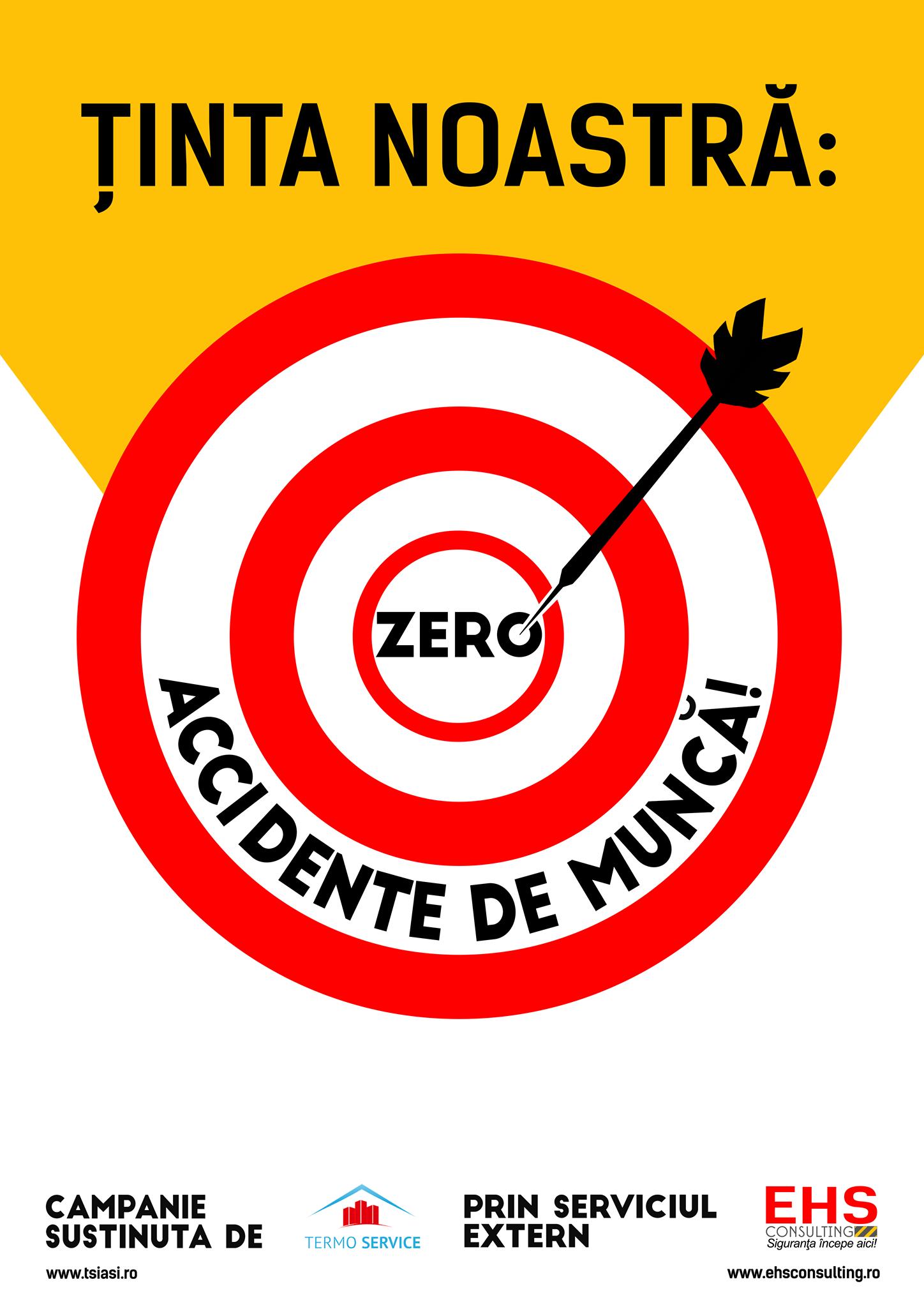 , Zero Accidente de Munca, EHS Consulting